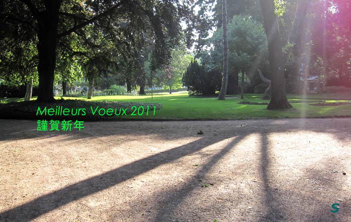Meilleurs Voeux 2011, photo:S.H.