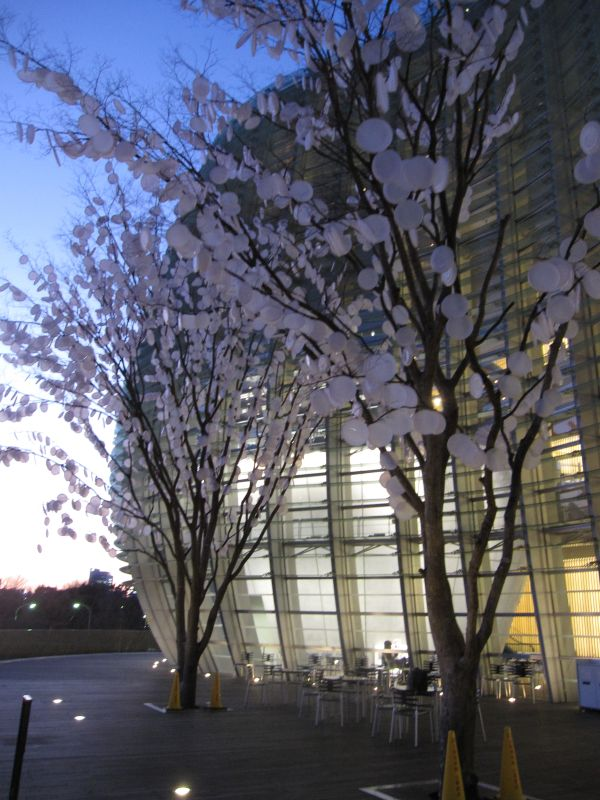 nact tokyo tree of photosynthesis